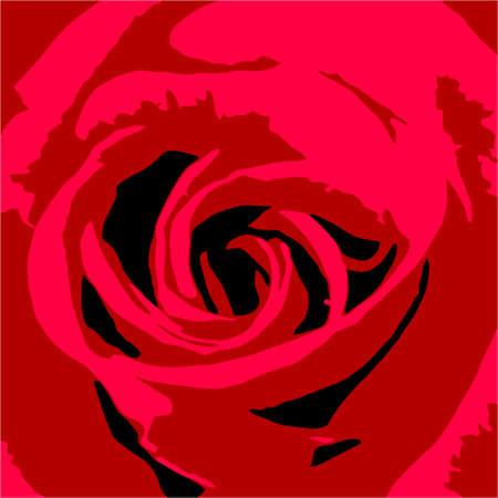 abloom: Ilustraci�n vectorial de una rosa Vectores