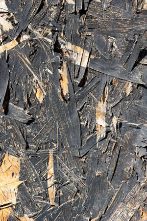 Old rustic wood plank background texture photo