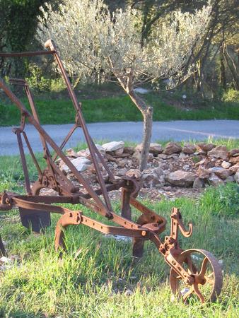 plough: old plough