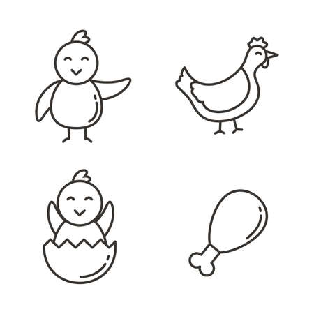 Set of chicken icon with line design. Chicken vector illustration