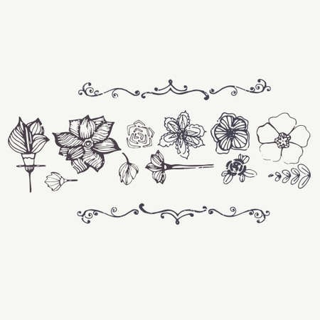 Modern graphical card with hand drawn flowers and vintage texture with perfect elegant frames on white background. Fully editable illustration drawn in vector by hand.