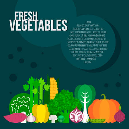celery: Fresh vegetables vector concept. Healthy diet flat style illustration. Isolated green food, can be used in restaurant menu, cooking books and organic farm labels.