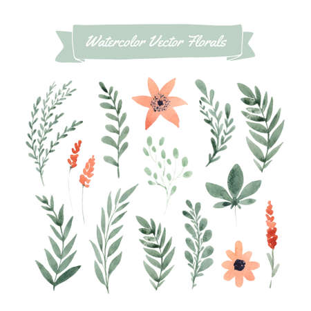 Set of hand painted watercolor flowers and leaves