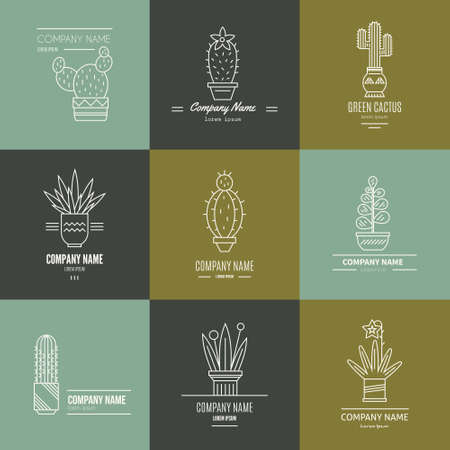 Linear illustration of succulent plants and cactuses in pots. Company corporate logo element design. Vector graphic set with cute florals.