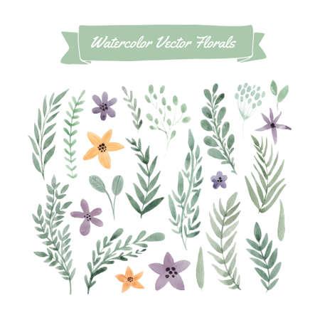 지에 handpainted 수채화 벡터 꽃과 잎의 집합입니다. 여름 결혼식, 봄 축 하 카드 디자인 요소입니다. 날짜 카드를 저장하기위한 완벽한 꽃 요소입니다.