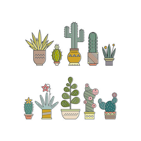 Flat colorful illustration of succulent plants and cactuses in pots. Company corporate logo element design. Vector botanical graphic set with cute florals. Illustration