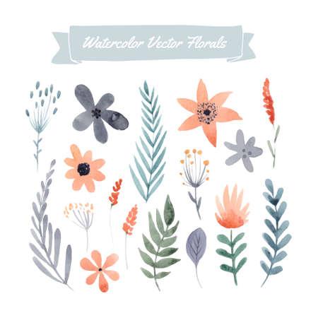 Conjunto de flores de la acuarela pintados a mano y hojas. Elemento de diseño para la boda del verano, tarjeta de felicitación de la primavera. Elementos florales perfectos para la tarjeta de fecha. Ilustraciones únicas para su diseño. Foto de archivo - 43067055