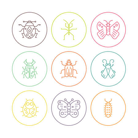 one isolated: Collection of bug line icons in circles - each one isolated on white background. Thin line symbols of different insects.