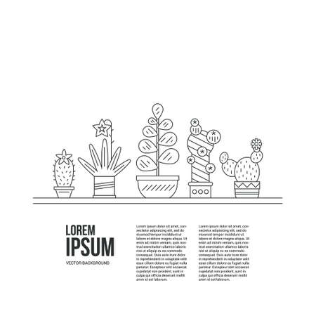 potted plant cactus: Graphical template with cactus and succulents in cute pots. Linear botanical with place for your text.