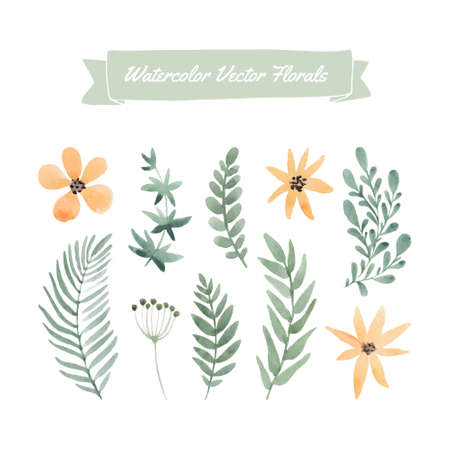Set of hand painted watercolor flowers and leaves.