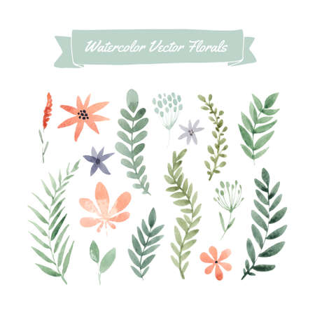 green flower: Set of hand painted watercolor esign. Illustration