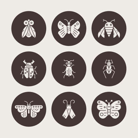 bugs: Silhouette collection of insects and bugs . Bug symbols, nature elements.