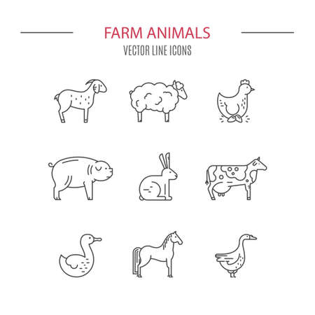 horse meat: Modern vector linear set of farm animals drawn in modern linear style. Farming icons. Animal symbols. Line series. Illustration