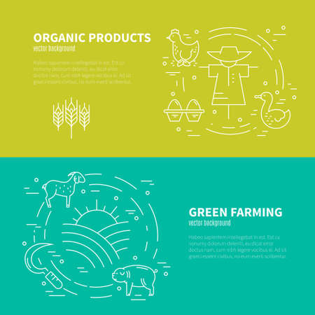stead: Farming concept with diffirent agricultural symbols made in vector. Great linear style conceptual banner template.Eco products series.
