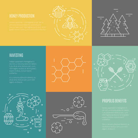 mead: Vector set of templates with honey related objects made in thin line style. Banner collection. Illustration