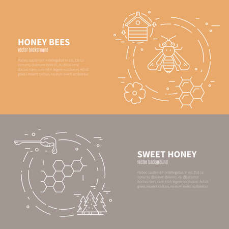 mead: Set of two flyers with honey, bee, forest and other natural product symbols. Vector template with sample text.