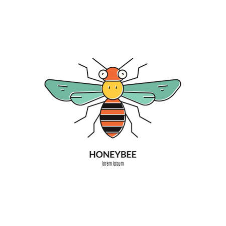 mead: Colorful honeybee logo. Perfect label for honey related business or other natural product industry. Illustration