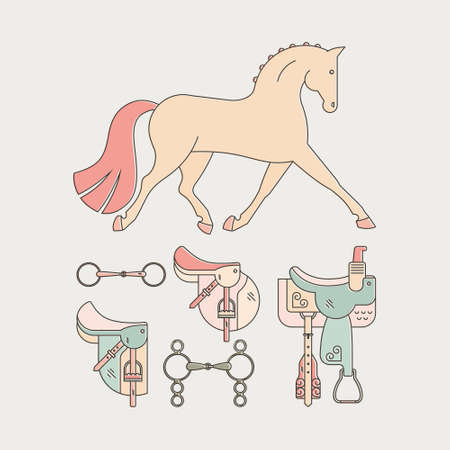 snaffle: Colorful illustration of a horse with horseriding gear including saddle, snaffle and bit. Vector linear equin graphic.