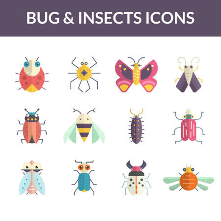 insect: Beautoful vector collection of insects made in modern flat style. Colorful bugs for your design.