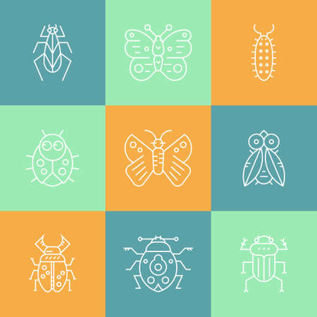 locust: Set of bug line vector icons. Thin line symbols of different insects. Illustration