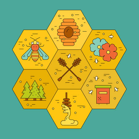 dipper: Colorful design element with different honey related items in honeycomb. Dipper, bee, forest, beehive made in modern vector style.