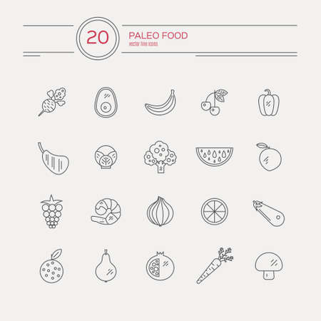 pictogramm: Monocolor paleo food linear icon collection made in vector. Modern illustrations of fruits, vegetables, meat. Cave man diet and healthy food pictogramms for web site, applications and other types of design.