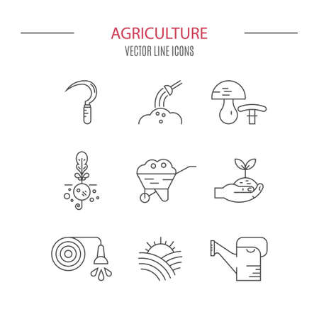 market gardener: Modern vector icon set for local markets or farming industry with different agricultural symbols. Perfect linear icon set. Illustration