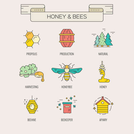 honey: Honeybees and honey design element collection made in vector. Hiver, honeycomb, harvest and other natural product symbols. Illustration