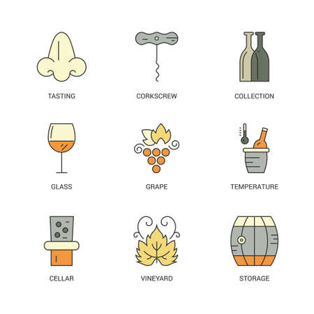 bottle nose: Wine design element collection - bottle, glass, grape, nose. Vineyard set of elements. Modern line style icons.