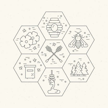 harvesting: Honey industry concept - different honey related items in honeycomb, Thin line vector series.