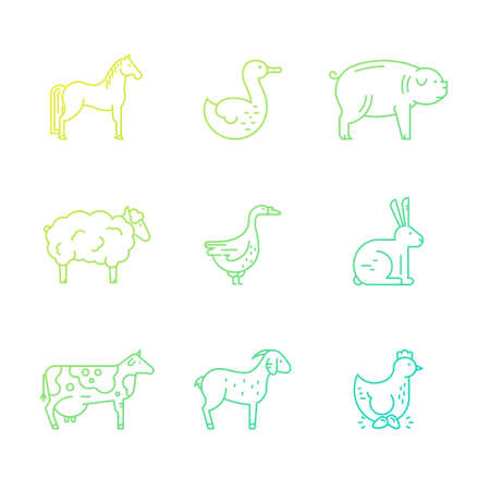 stead: Collection of farm animals including cow, chicken, sheep, rabbit. Livestock collection. Vector line series.