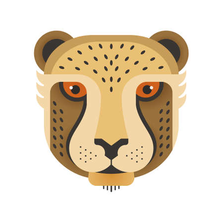 safari animal: Portrait of a cheetah made in trendy flat style vector. African animal. Safari label or t-shirt design with cute animal character.