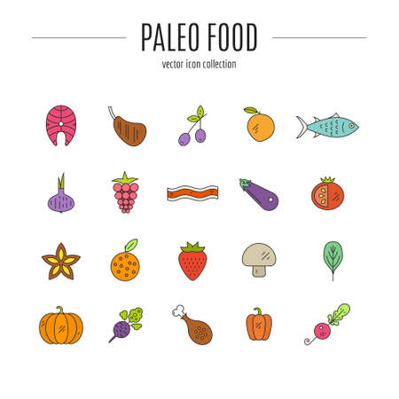 man made: Paleo food icon collection made in linear style vector. Cute modern illustrations of fruits, vegetables, meat. Cave man diet and healthy food pictogramms for web site, applications and other types of design. Illustration