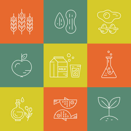intolerancia: Vegetarianas, paleo, libre de gluten - iconos e ilustraciones de diferentes dietas. La intolerancia alimentaria línea colección symbols.Vector de iconos modernos.