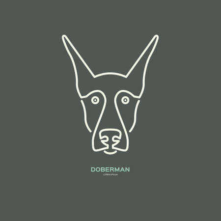 breeder: Portrait of doberman made in modern line style vector. Perfect logo for dog breeder, pet shop, veteriarian clinic or dog training company.
