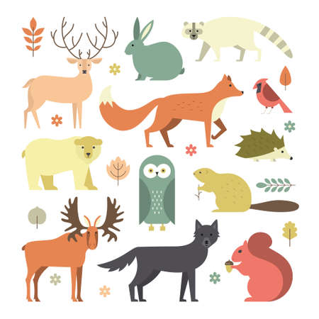Set of forest animals made in flat style vector. Zoo cartoon collection for children books and posters. Wolf, reindeer, moose, racoon, fox, bear and other mammals. Each animal isolated and easy to use.