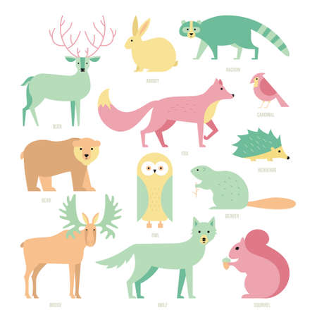 mammals: Set of forest animals made in flat style vector. Zoo cartoon collection for children books and posters. Wolf, reindeer, moose, racoon, fox, bear and other mammals. Each animal isolated and easy to use.