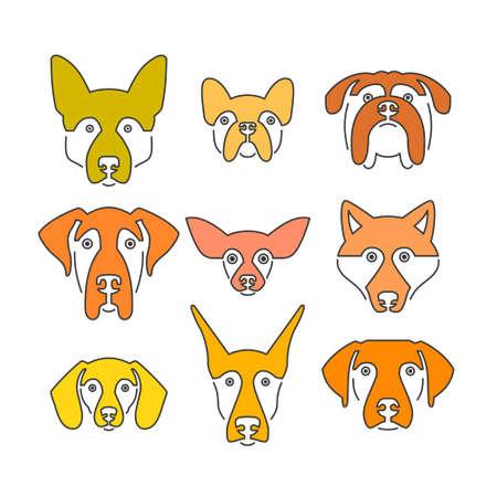 dog walker: Creative portrait collection of different dog breeds, including german sheepherd, labrador, doberman, husky. Dog faces. Modern illustration of veterinarian clinic, dog breeder logo.
