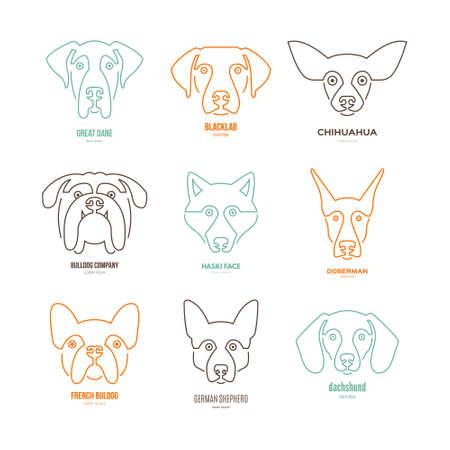 dog walker: Logo collection with different dog breeds, including german sheepherd, labrador, doberman, husky. Dog faces. Modern illustration of veterinarian clinic, dog breeder logo.