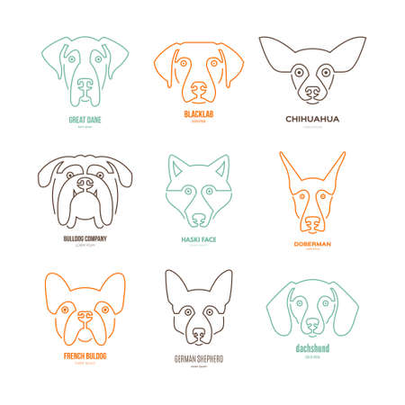 Logo collection with different dog breeds, including german sheepherd, labrador, doberman, husky. Dog faces. Modern illustration of veterinarian clinic, dog breeder logo.