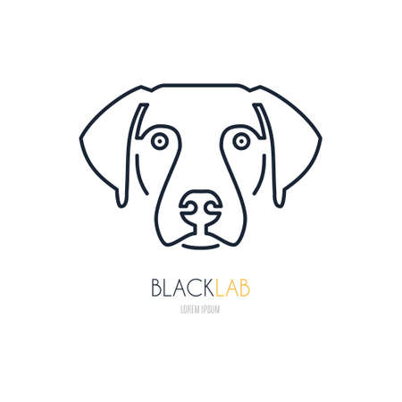 breeder: Portrait of labrador made in modern line style vector. Perfect logo for dog breeder, pet shop, veteriarian clinic or dog training company.