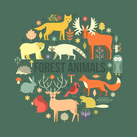 mammals: Collection of forest animals arranged in a circle. Flat style illustration isolated on background.  Zoo cartoon collection for children books and posters. Wolf, reindeer, moose, racoon, fox, bear and other mammals.