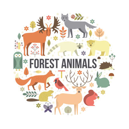 racoon: Collection of forest animals arranged in a circle. Flat style illustration isolated on background.  Zoo cartoon collection for children books and posters. Wolf, reindeer, moose, racoon, fox, bear and other mammals.