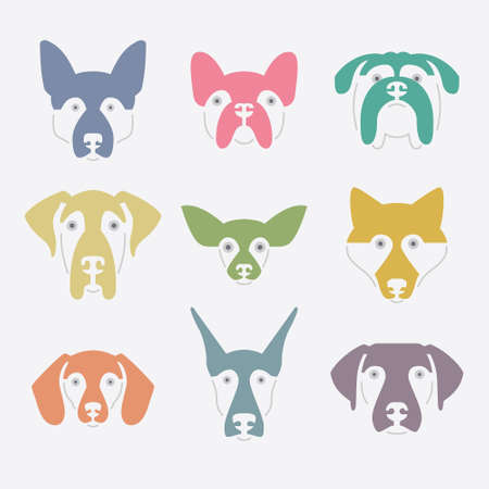 breeder: Creative portrait collection of different dog breeds, including german sheepherd, labrador, doberman, husky. Dog faces. Modern illustration of veterinarian clinic, dog breeder logo.
