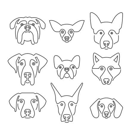 breeder: Creative portrait collection of different dog breeds, including german sheepherd, labrador, doberman, husky. Dog faces. Modern illustration of veterinarian clinic, dog breeder.