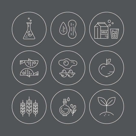 allergens: Food intolerance icons, including gluten, seafood, lactose, soy, gmo, eggs, nuts. Food allergens. Line style vector collection.