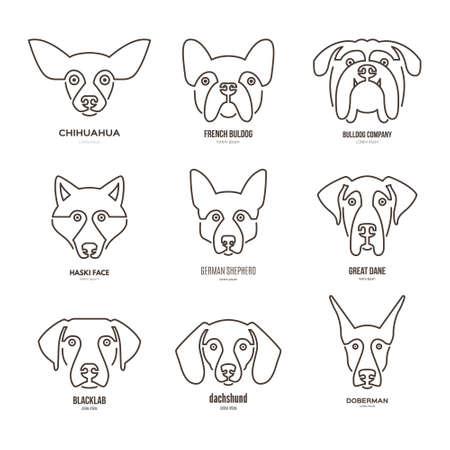 collection of different dog breeds, including german sheepherd, labrador, doberman, husky. Dog faces. Modern illustration of veterinarian clinic, dog breeder. Vettoriali