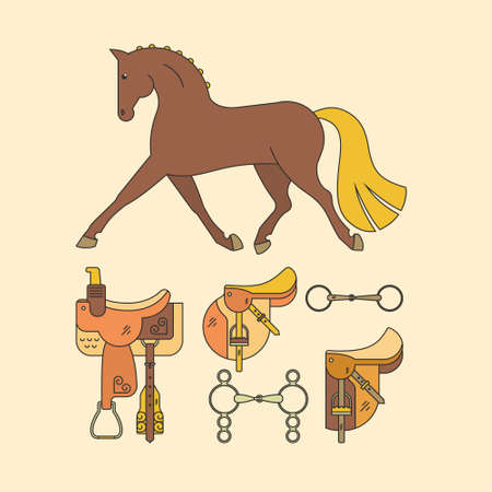 snaffle: Horse and equine gear. Different saddles including western, bits and horse made in vector. Isolated equestrian elements.