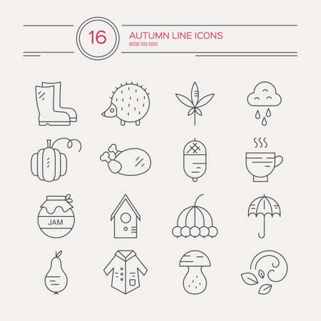 rain coat: Big collection of linear icons with different autumn and fall symbols. Vector line icon series. Turkey, umbrella, rain, mushroom, coat and other seasonal elements.