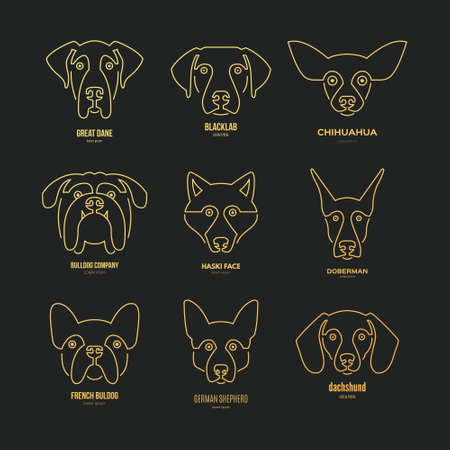 Logo collection with different dog breeds, including german sheepherd, labrador, doberman, husky. Dog faces. Modern illustration of veterinarian clinic, dog breeder logo.